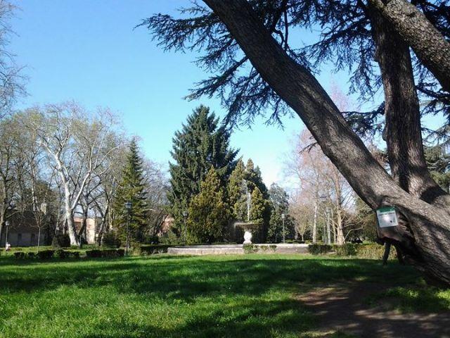 Parco Massari, domenica 9.03.14